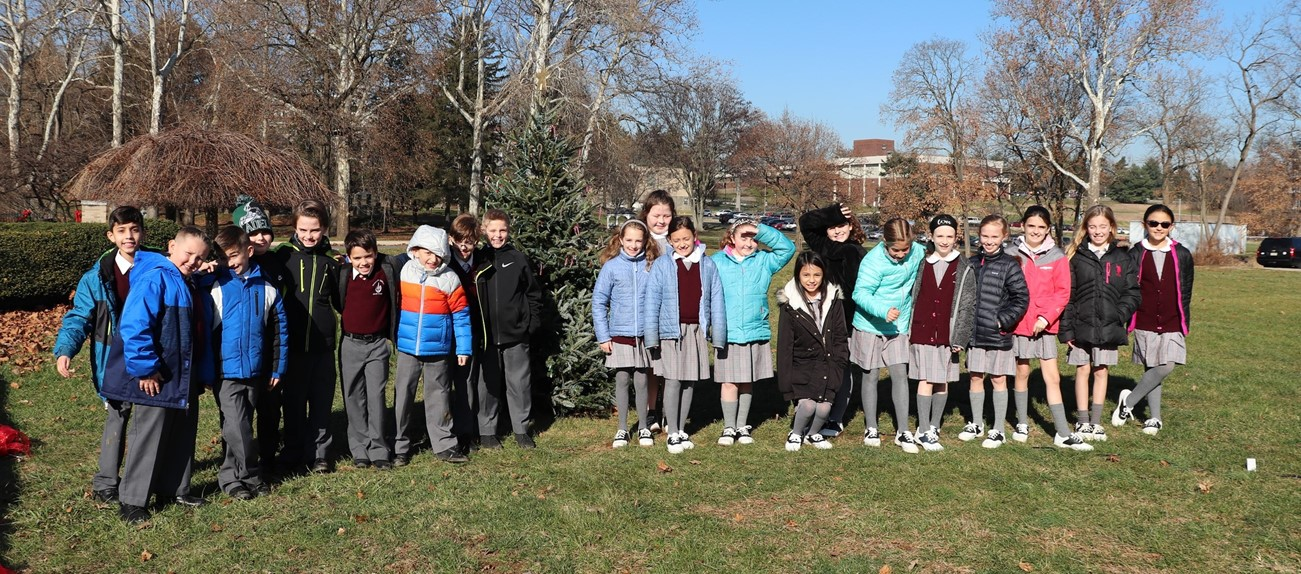 students by tree